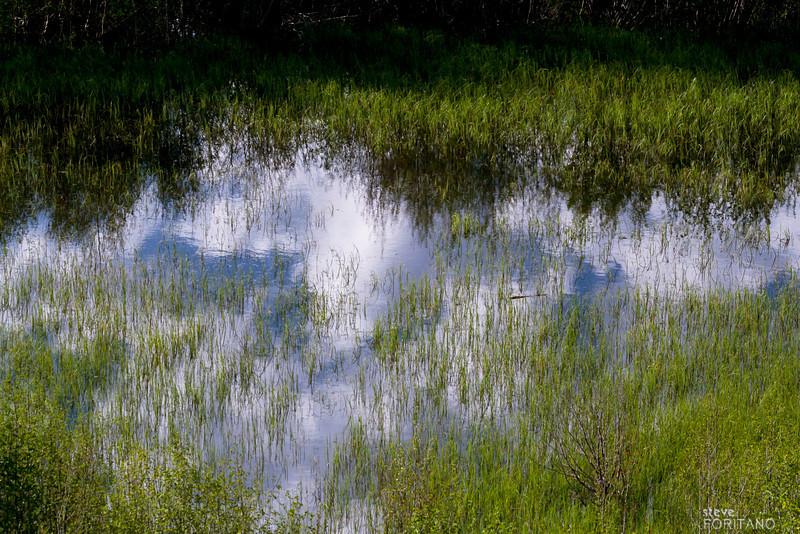 Reflection of the sky, Moose Wilson Rd., near Grand Teton National Park