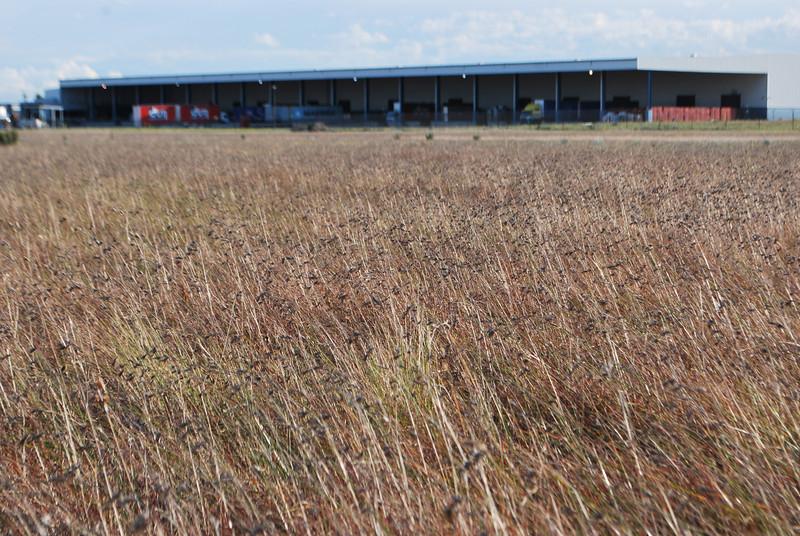 2010 - September