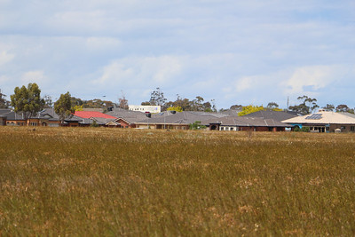 Mt Derrimut Grasslands