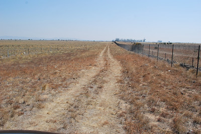 Kirks Bridge Rd Offset - Cyclone fence has been constructed around the offset and the road has been diverted along this section.  Note that the orange hue in this photo is Themeda which has regenerated after the grazing pressure has been taken off the site.  You can see that the property to the South (Left side of photo) still has grazing pressure.
