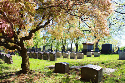 Easton Cemetery, Easton, PA  5/1/2013