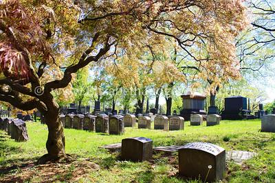 Easton Cemetery, Easton, PA  5/1/2013