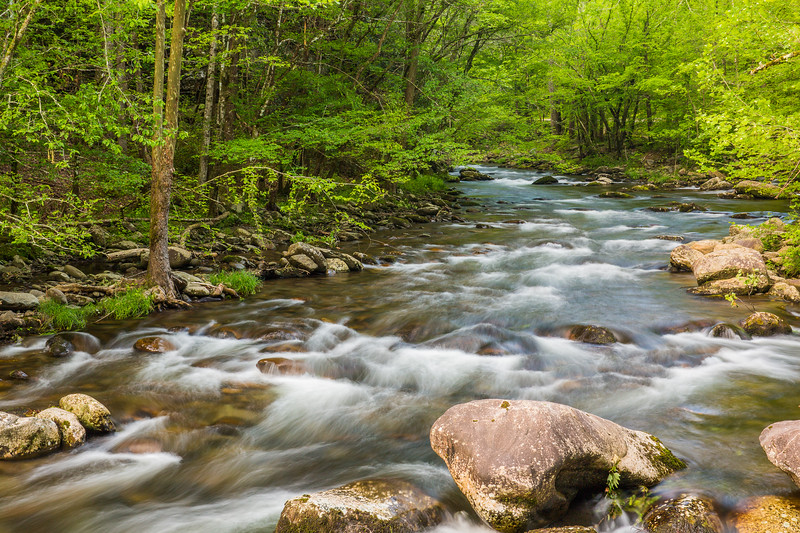2017_5_6-12 Smoky Mountains National Park-1043-2