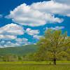 2017_5_6-12 Smoky Mountains National Park-1356-2