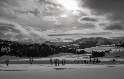 Lamar Valley | Yellowstone NP