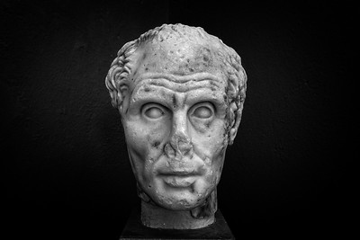 Head of the old man, from the Palaistra near the lake, end of 2nd century BC