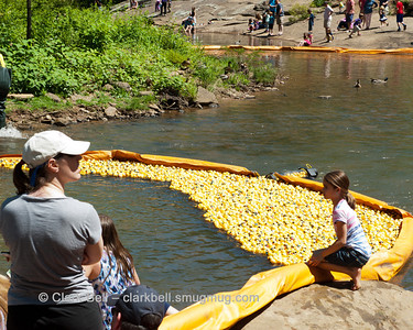 2014 Greenville Duck Derby 16