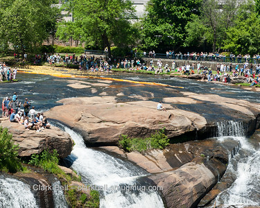2014 Greenville Duck Derby 8