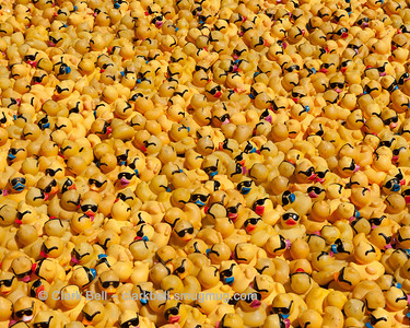 2014 Greenville Duck Derby 17
