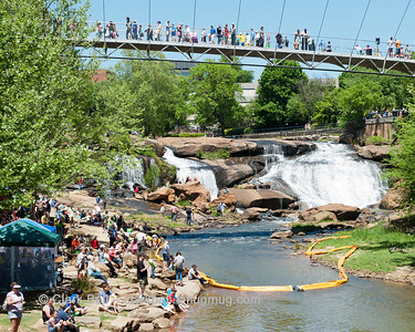 2014 Greenville Duck Derby 3