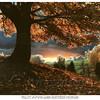 Frosty Autumn Dawn-Northern Michigan