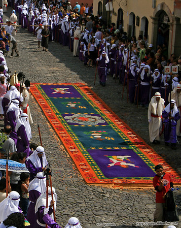 Procession approacing a carpet, Antigua, Guatemala.