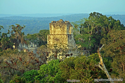 Tikal, Mayan ruins, Guatemala.