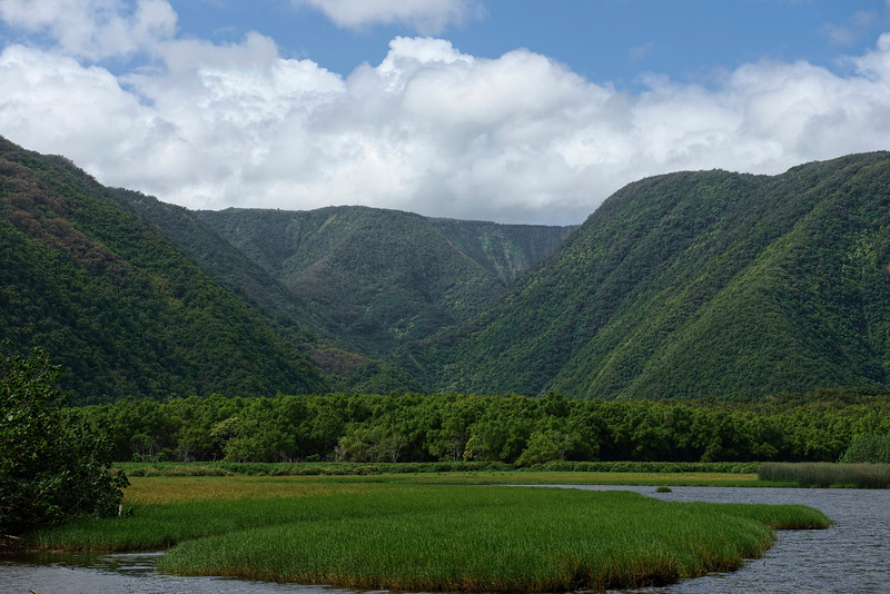 Hike at Pololū Valley