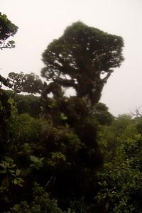 20100201_000491