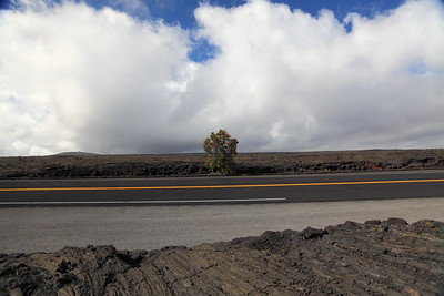 Road through volcanic landscape on Kilauea Volcano, Hawaii.  I like the contrast of the flat, smooth, straight black road against the chaotic and lumpy lava, and the occasional plants in the midst of barrenness.