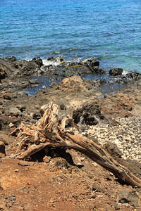 2012_05_29 Kihei Surfside 126