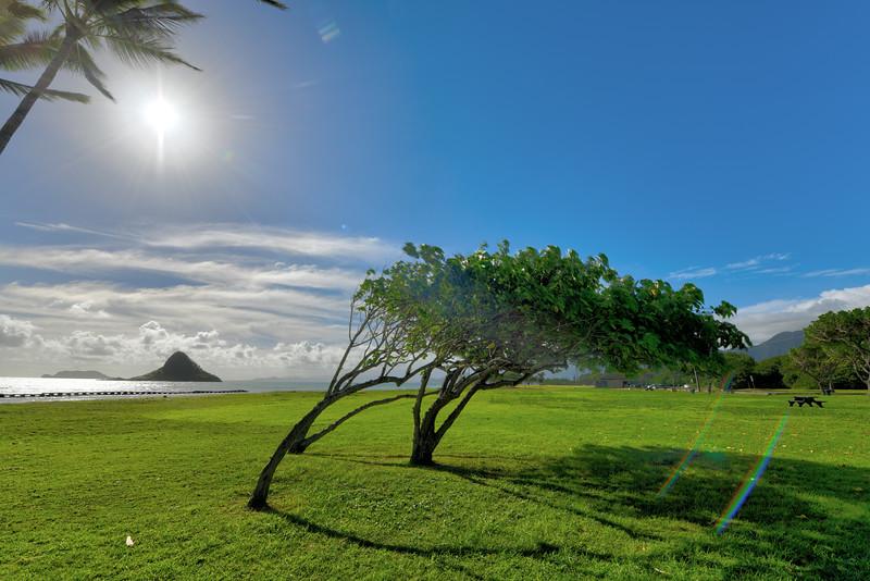Sun over Mokoliʻi