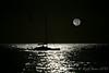 Pre Dawn Moon lit Catamaran