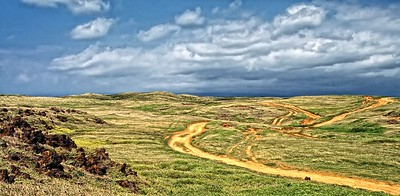 Hawaiian Plains