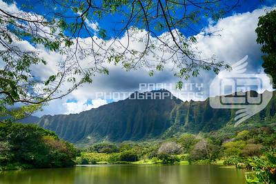 Botanical Gardens, Oahu