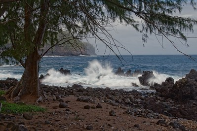 Laupahoehoe Point 17