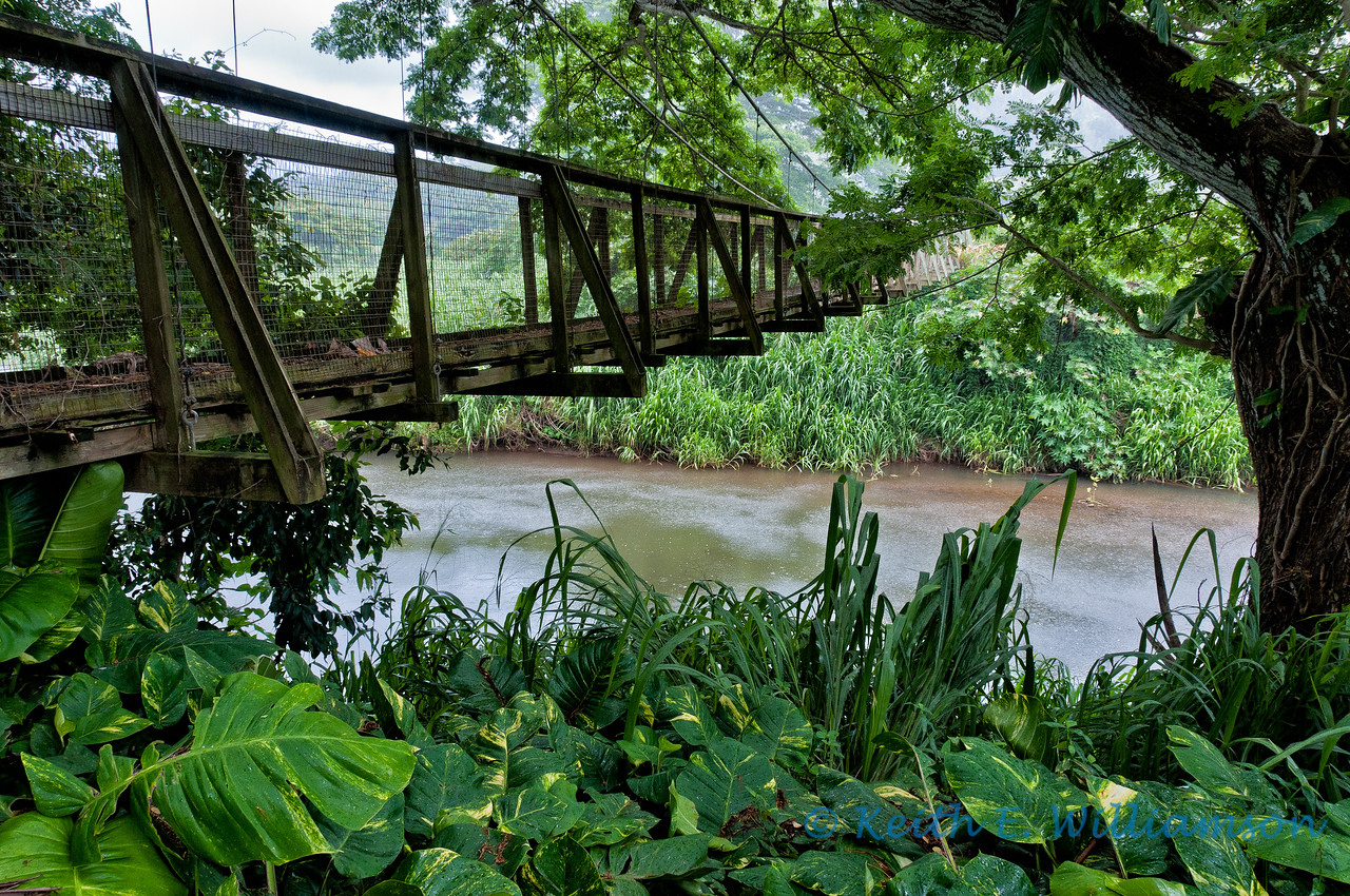 Footbridge, Wailua area, Kauai