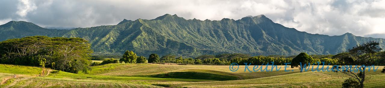 Farm in north Kauai, five image stitched