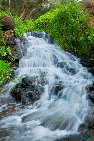Waterfall, near Queen's bath, Kauai