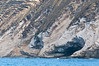 Lehua island