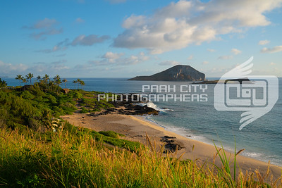 Morning on the Oahu
