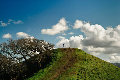 Acalanes Ridge -  Photographer and Dog