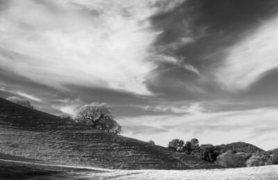 Acalanes Ridge - Wisps of Clouds