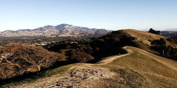 Acalanes Ridge -  Looking to Diablo
