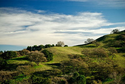 Acalanes Ridge -Gentle Curves