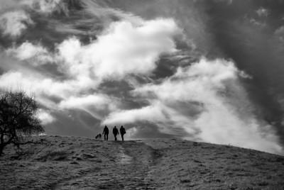 Acalanes Ridge - Walking Horizon
