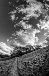 Acalanes Ridge - Between Storms