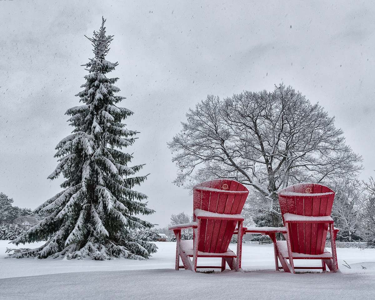Muskoka comfort at the RBG