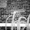 Tall Grass and Bricks