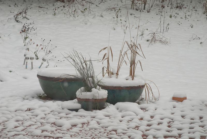 snow day-20101213-15