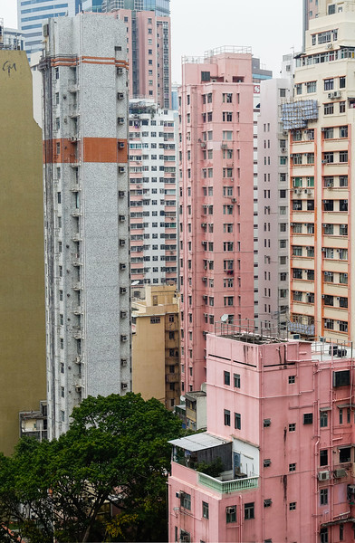 Pastel People Trees<br /> Hong Kong, People's Republic of China<br /> 2015