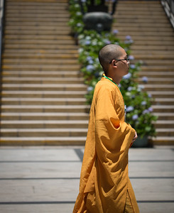 Buddhist Monk, Tian Tan Buddha