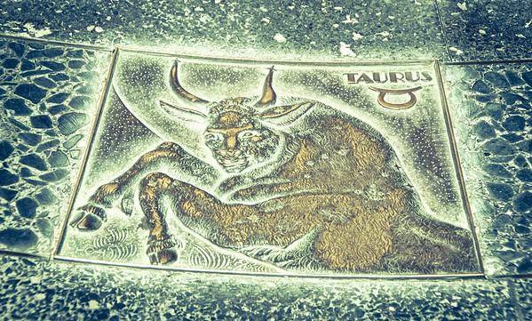 Taurus sign