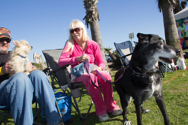 huntington-beach-dog-beach-7580