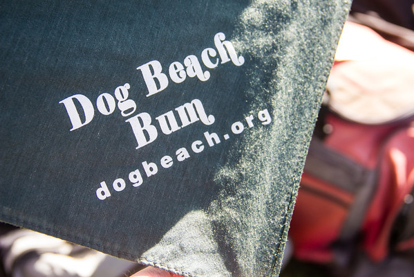 huntington-beach-dog-beach-7613