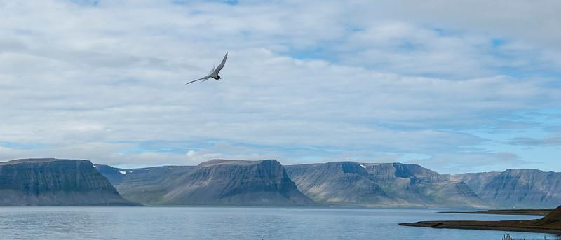 Westfjords, Iceland.