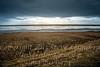 The Sea - Copyright 2017 Steve Leimberg - UnSeenImages Com _DSC8323