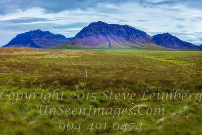 Mountains and Grass in Iceland - Copyright 2017 Steve Leimberg - UnSeenImages Com _Z2A0817