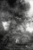 Geyser - B&W Copyright 2017 Steve Leimberg - UnSeenImages Com _Z2A3026