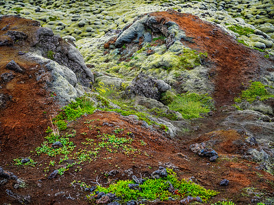 Near Cairns  Iceland Copyright 2021 Steve Leimberg UnSeenImages Com _DSF0681